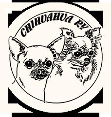Chihuahua ry -logo