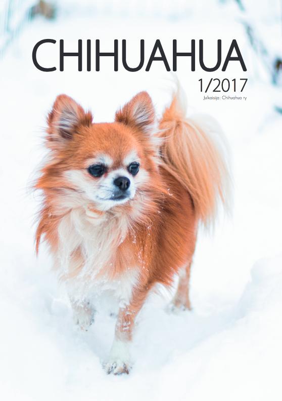 lehti-1-2017