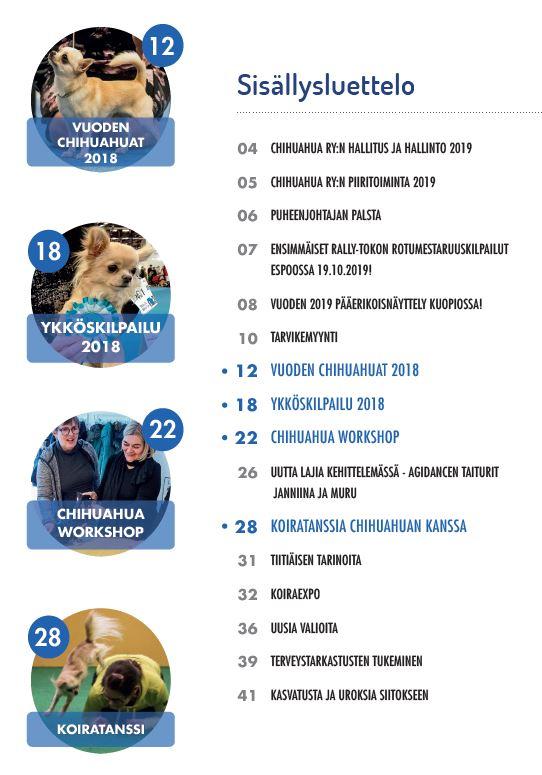 sisalto-2-2019